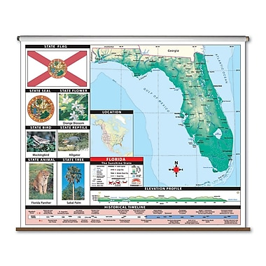 Universal Map Primary Thematic Wall Map - Florida