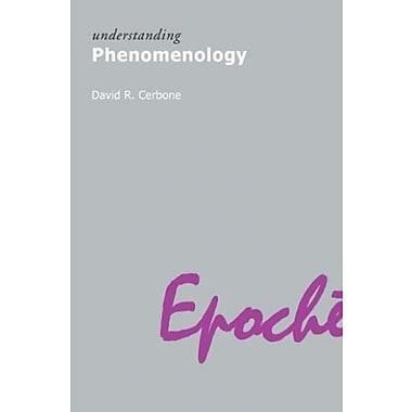 Understanding Phenomenology, New Book (9781844650552)