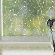 Odhams Press Willow Privacy Window Film; 48  H X 36  W