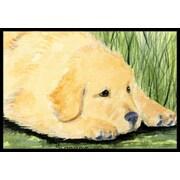 Caroline's Treasures Golden Retriever Doormat; Rectangle 2' x 3'