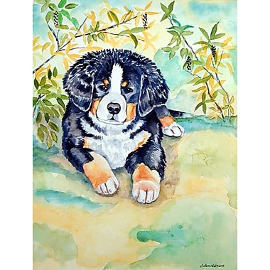 Caroline's Treasures Bernese Mountain Dog Puppy 2-Sided Garden Flag