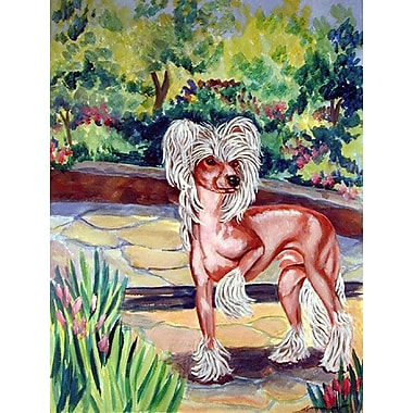 Caroline's Treasures Chinese Crested on the patio 2-Sided Garden Flag