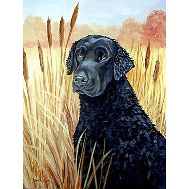 Caroline's Treasures Curly Coated Retriever House Vertical Flag