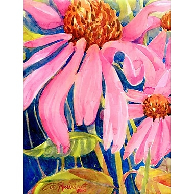Caroline's Treasures Coneflower 2-Sided Garden Flag