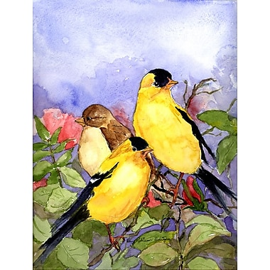 Caroline's Treasures American Goldfinch 2-Sided Garden Flag