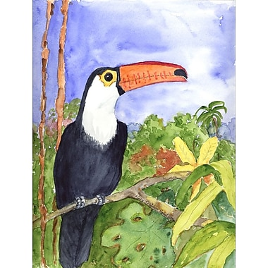 Caroline's Treasures Toucan 2-Sided Garden Flag
