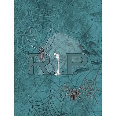 Caroline's Treasures RIP Rest in Peace w/ spider web Halloween House Vertical Flag