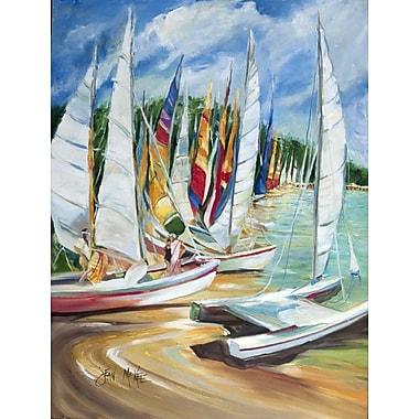 Caroline's Treasures Eastern Shore Sailboats House Vertical Flag
