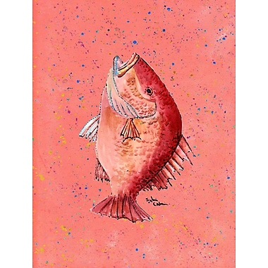 Caroline's Treasures Fish Strawberry Snapper House Vertical Flag