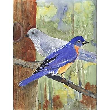 Caroline's Treasures Mountain Bluebird 2-Sided Garden Flag