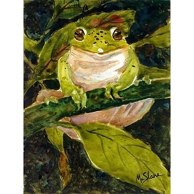 Caroline's Treasures Frog 2-Sided Garden Flag