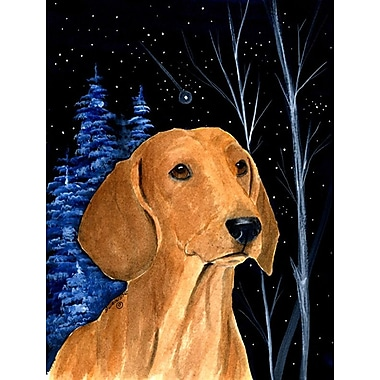 Caroline's Treasures Starry Night Dachshund 2-Sided Garden Flag