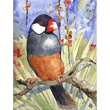 Caroline's Treasures Java Sparrow House Vertical Flag