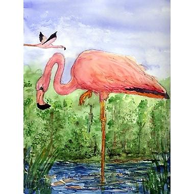 Caroline's Treasures Flamingo House Vertical Flag