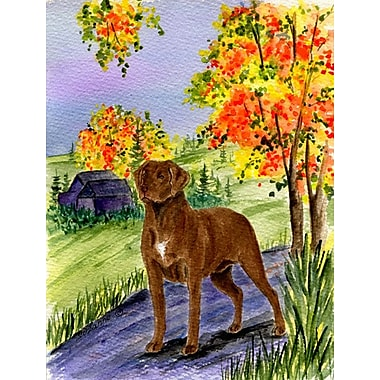 Caroline's Treasures Chesapeake Bay Retriever 2-Sided Garden Flag