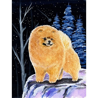 Caroline's Treasures Starry Night Pomeranian 2-Sided Garden Flag
