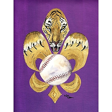 Caroline's Treasures Tiger Fleur de lis Baseball 2-Sided Garden Flag