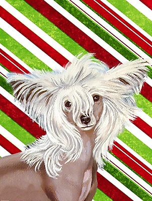 Caroline's Treasures Chinese Crested Candy Cane Holiday Christmas 2-Sided Garden Flag