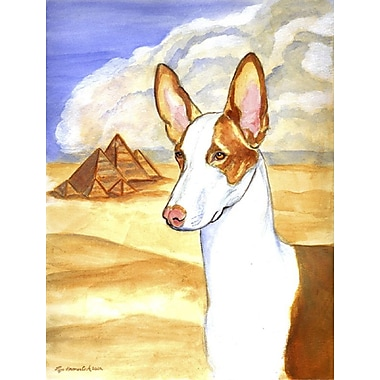 Caroline's Treasures Ibizan Hound House Vertical Flag