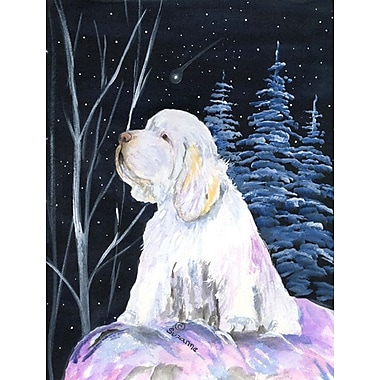 Caroline's Treasures Clumber Spaniel House Vertical Flag
