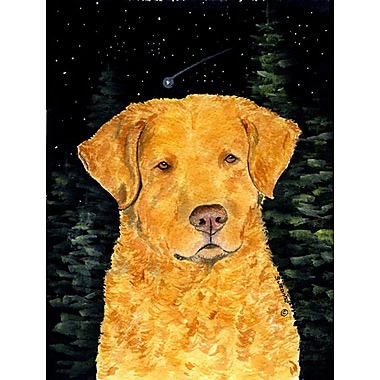 Caroline's Treasures Starry Night Chesapeake Bay Retriever House Vertical Flag