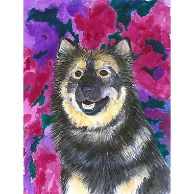 Caroline's Treasures Finnish Lapphund 2-Sided Garden Flag