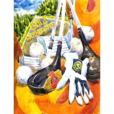 Caroline's Treasures Southeastern Golf Clubs w/ glove and balls 2-Sided Garden Flag