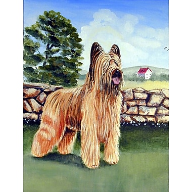 Caroline's Treasures Briard by the Stone Fence 2-Sided Garden Flag