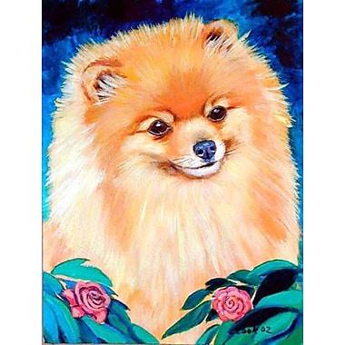 Caroline's Treasures Pomeranian Garden Bud 2-Sided Garden Flag