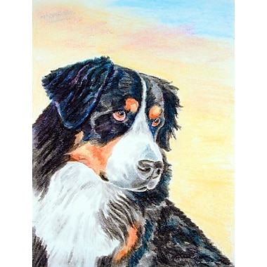 Caroline's Treasures Bernese Mountain Dog 2-Sided Garden Flag