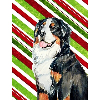 Caroline's Treasures Bernese Mountain Dog Candy Cane Holiday Christmas 2-Sided Garden Flag