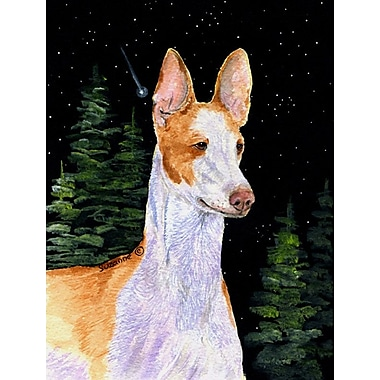 Caroline's Treasures Starry Night Ibizan Hound 2-Sided Garden Flag