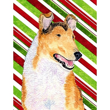 Caroline's Treasures Collie Smooth Candy Cane Holiday Christmas 2-Sided Garden Flag