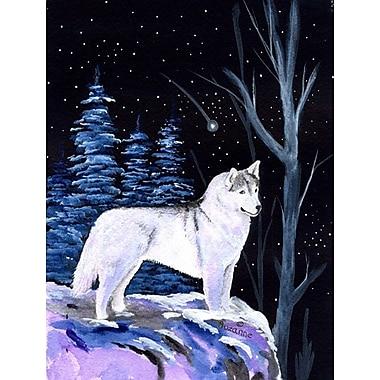 Caroline's Treasures Starry Night Siberian Husky 2-Sided Garden Flag