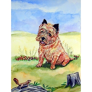 Caroline's Treasures Cairn Terrier and the chipmunk House Vertical Flag