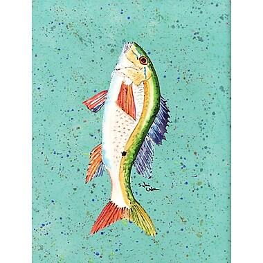 Caroline's Treasures Fish Mutton Snapper House Vertical Flag