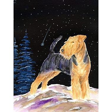 Caroline's Treasures Starry Night Welsh Terrier House Vertical Flag