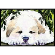 Caroline's Treasures Golden Retriever Doormat; 1'6'' x 2' 3''