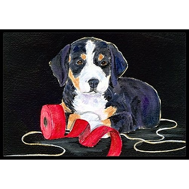 Caroline's Treasures Entlebucher Mountain Dog Doormat; Rectangle 1'6'' x 2' 3''