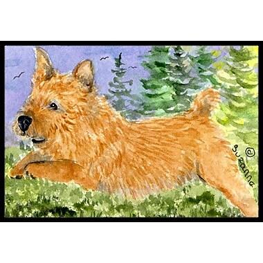 Caroline's Treasures Norwich Terrier Doormat; Rectangle 1'6'' x 2' 3''