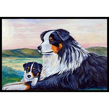 Caroline's Treasures Australian Shepherd Doormat; Rectangle 2' x 3'