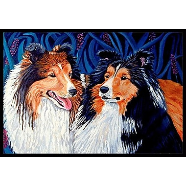 Caroline's Treasures Sheltie Doormat; Rectangle 2' x 3'