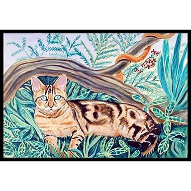 Caroline's Treasures Maine Cat Coon Doormat; Rectangle 2' x 3'