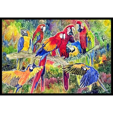 Caroline's Treasures Parrot Doormat; Rectangle 1'6'' x 2' 3''