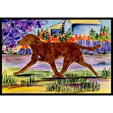 Caroline's Treasures Chesapeake Bay Retriever Doormat; Rectangle 1'6'' x 2' 3''