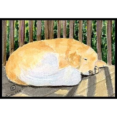 Caroline's Treasures Golden Retriever Doormat; Rectangle 1'6'' x 2' 3''