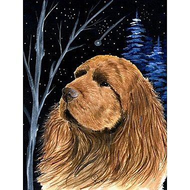 Caroline's Treasures Starry Night Sussex Spaniel House Vertical Flag