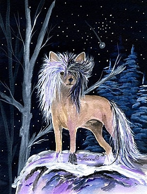 Caroline's Treasures Starry Night Chinese Crested House Vertical Flag