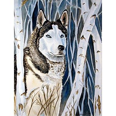 Caroline's Treasures Siberian Husky 2-Sided Garden Flag