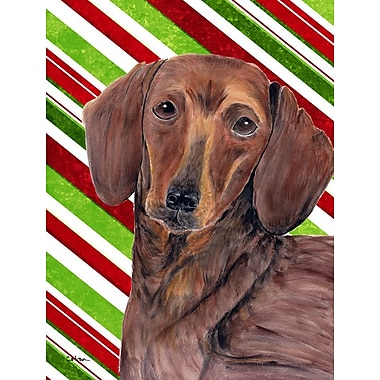 Caroline's Treasures Dachshund Candy Cane Holiday Christmas 2-Sided Garden Flag